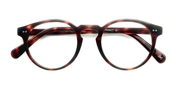Warm Tortoise Theory -  Geek Acetate Eyeglasses