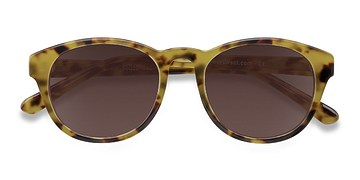 Brown/Tortoise Coppola -  Plastic Sunglasses